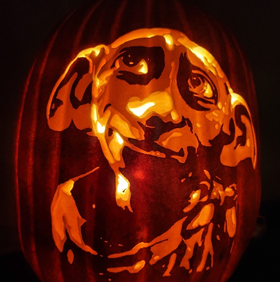 Dobby Pumpkin Carving