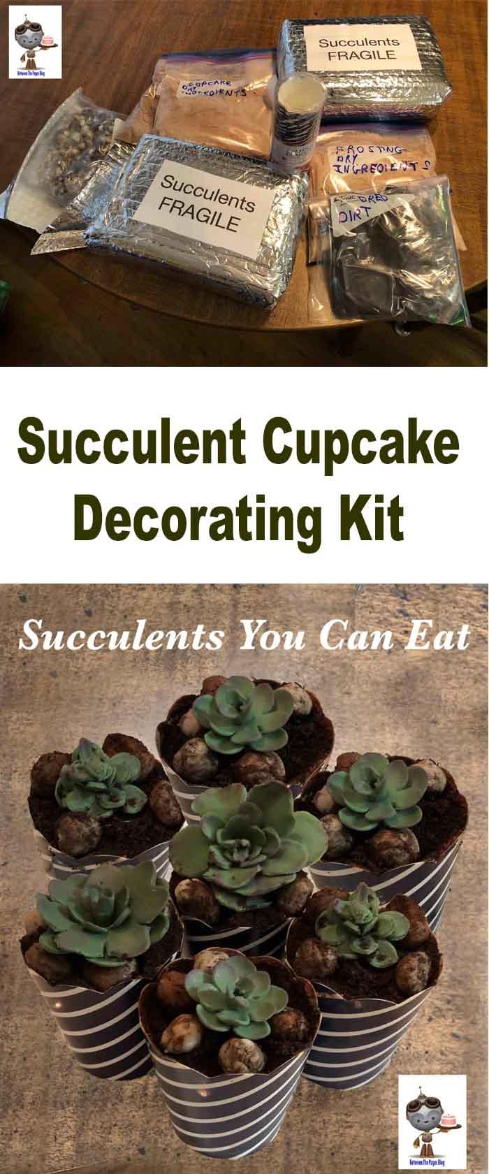 Succulent Cupcake Kit