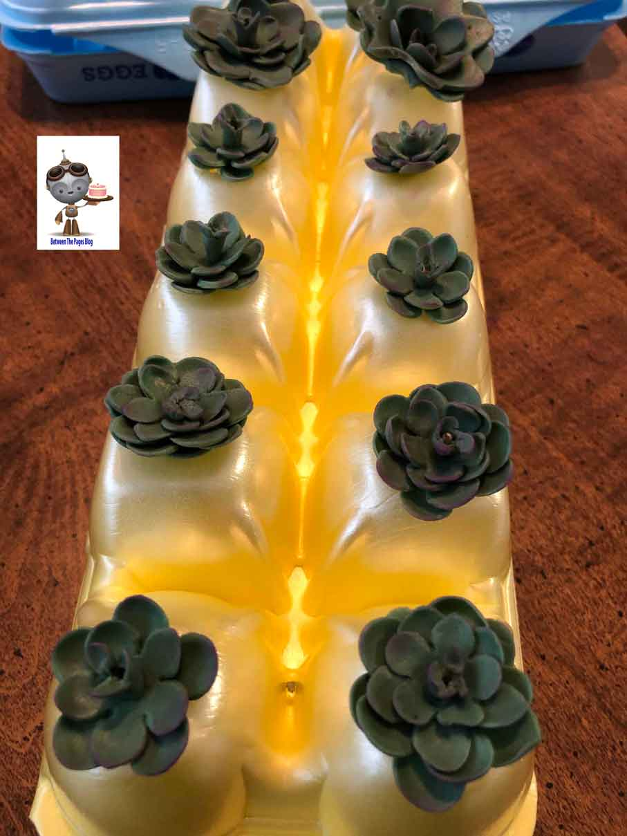Succulent Cupcake Toppers