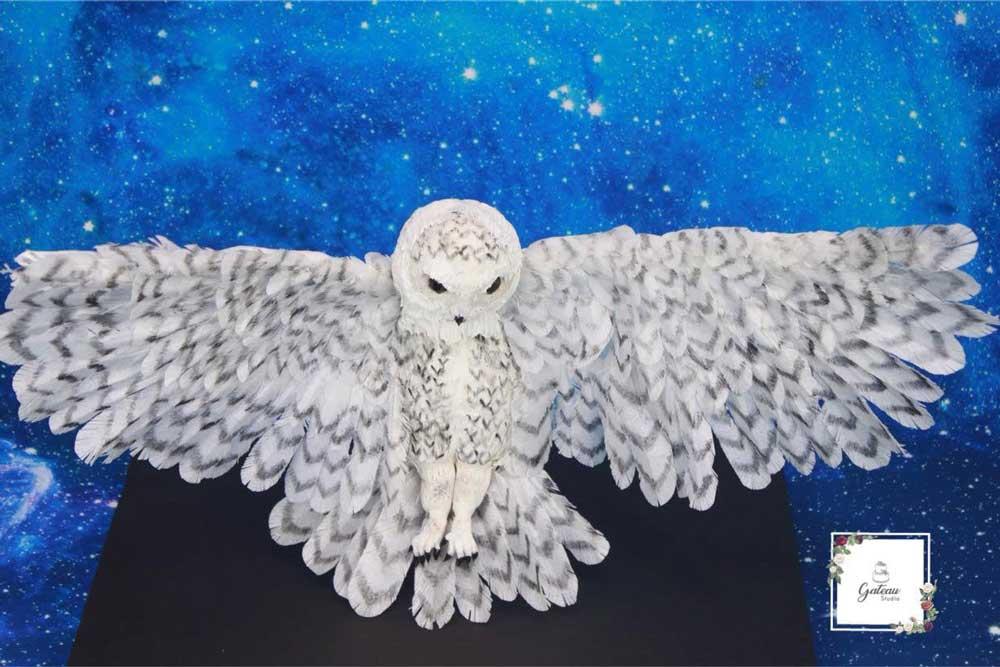 Flying Hedwig Cake